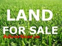 AGRICULTURAL LAND FOR SALE, DERRYBRIEN, LOUGHREA, CO. GALWAY