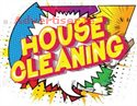 A PAIR OF DOMESTIC HOUSE CLEANERS REQUIRED