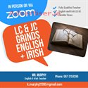 JUNIOR/LEAVING CERT ENGLISH AND IRISH GRINDS
