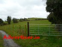 AGRICULTURAL LAND FOR SALE, KNOCK, TAGHMACONNELL, CO. ROSCOMMON