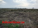 AGRICULTURAL LAND FOR SALE, CARROWNTRYLA, DUNMORE, CO. GALWAY